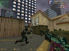 counter-strike 1.6 professional